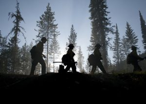 forest_workers_group
